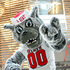 Mr. Wuf shows his school spirit at Talley Student Union. Photo by Marc Hall
