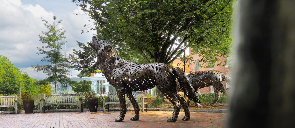 Copper wolves of Wolf Plaza. Photo by Marc Hall
